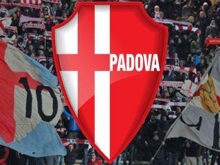 MosaicoGroup</br>partner del Calcio Padova